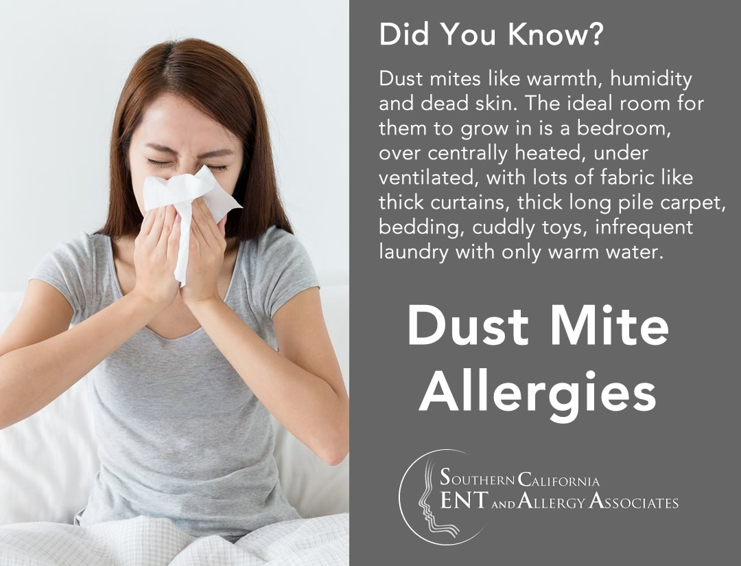 Mold Allergies Los Angeles