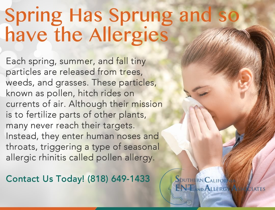Spring and Summer Allergies